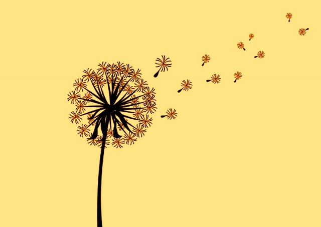 scattered-dandelion-silhouette
